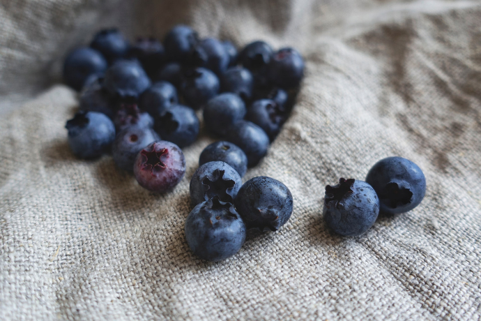 Blueberry feast in Malá Morávka 2020